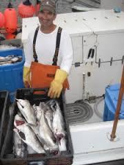 cape cod fisheries trust